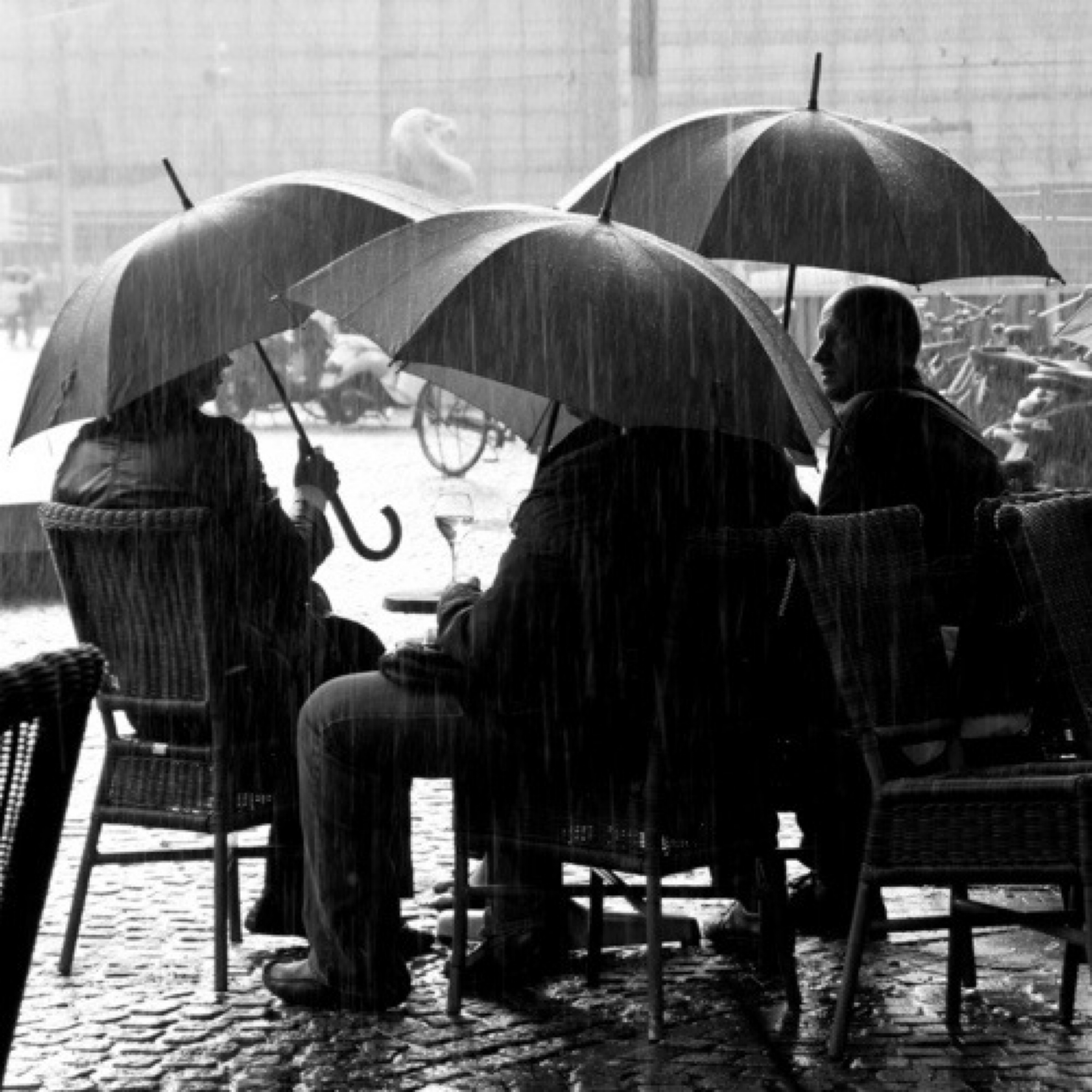 The Man Has Style - Rainy Days